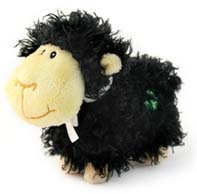 Huggable Shaggy Black Sheep